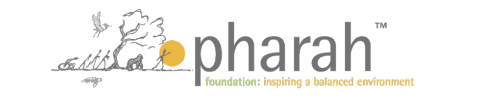 Pharah Foundation Inspiration