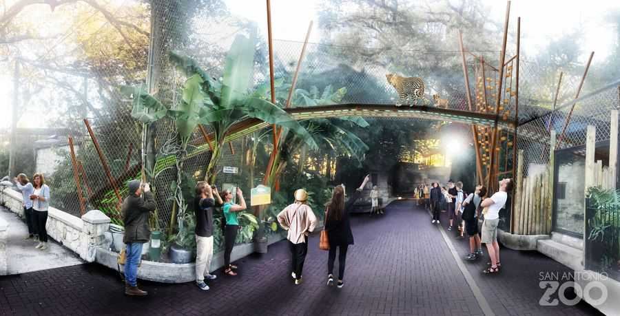 San Antonio Zoo rendering
