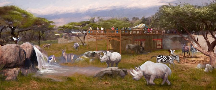 Concept art for rhino habitat at San Antonio Zoo