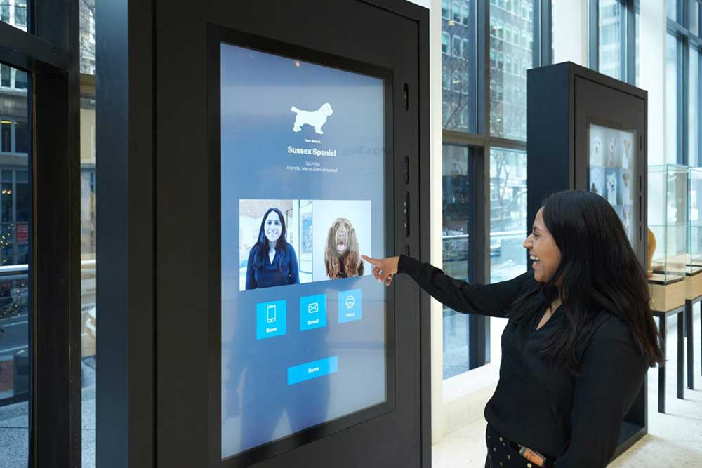 09882427522 » AKC s Museum of the Dog opens with digital dog training