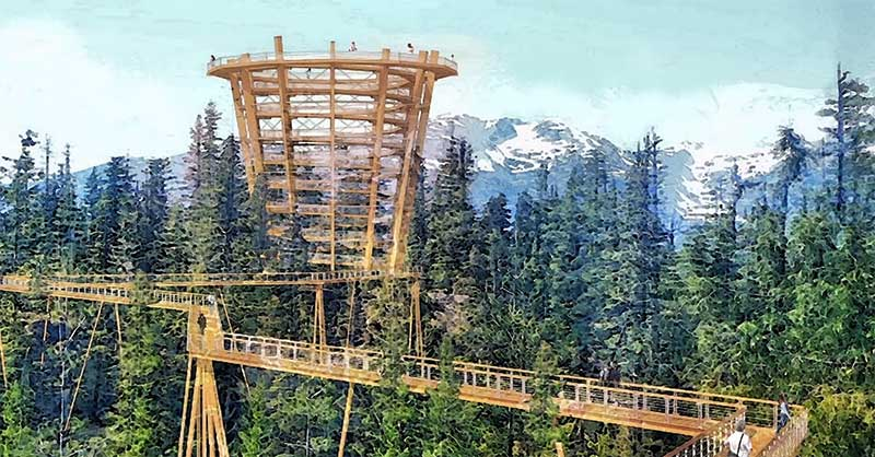 Spectacular tree canopy walk planned for Sea to Sky Gondola, BC