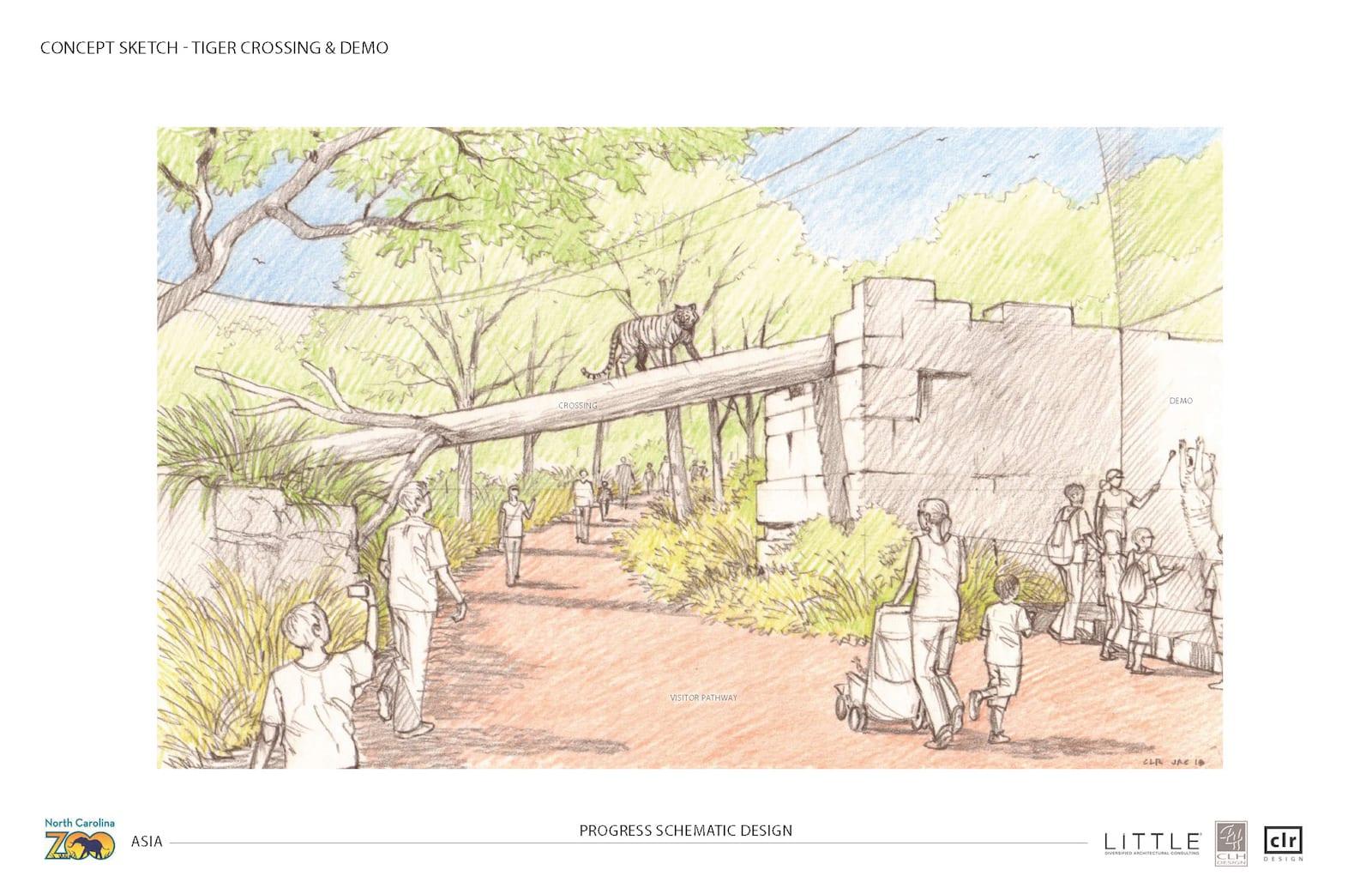 tiger asia concept art north carolina zoo