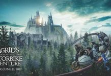 Universal Orlando reveals details of new Harry Potter ride and opening date