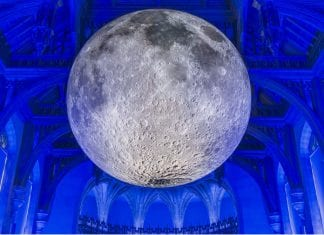 Natural History Museum gets into wellness with yoga under the Moon museum yoga