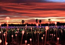 Artainment: Bruce Munro: Field of Light at Sensorio
