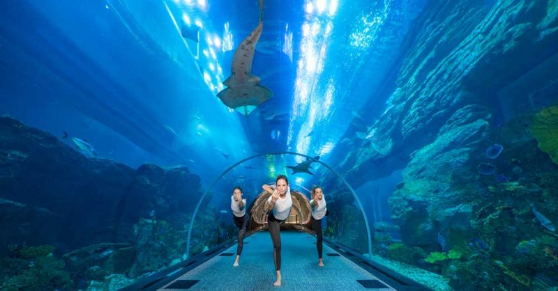 underwater yoga at Dubai Aquarium