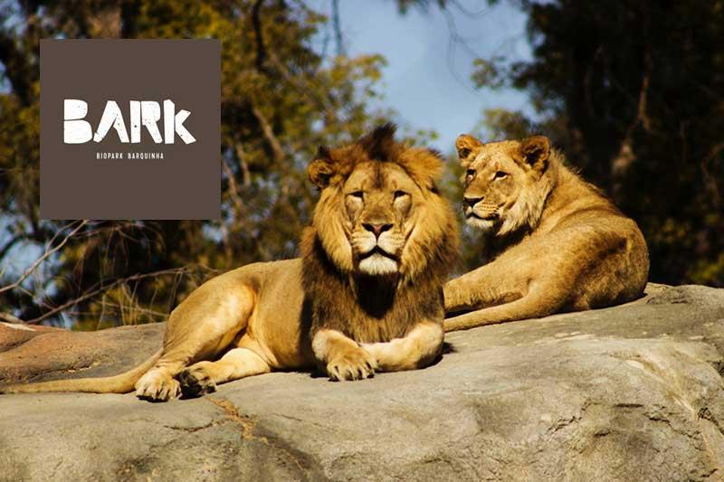 Bark - Biopark Barquinha
