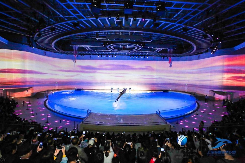 Shanghai-Haichang-Ocean-Park_dolphin-show-theatre
