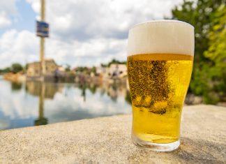 seaworld orlando free beer