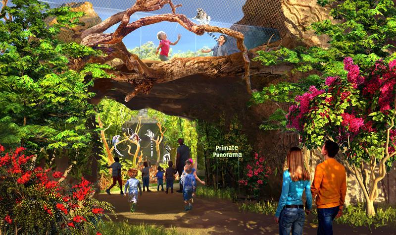 saint louis zoo expansion primate canopy trails
