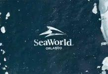 seaworld orlando breaktheice roller coaster