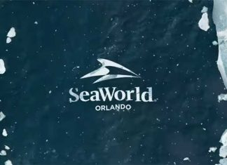 seaworld orlando breaktheice roller coaster