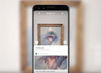 google lens, de young museum