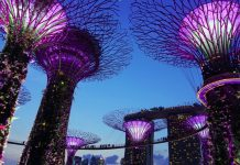 brand storytelling Gardens by the Bay