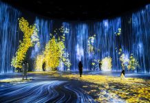 teamlab shanghai exhibit
