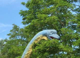 Themebuilders Dino Splash Plopsaland