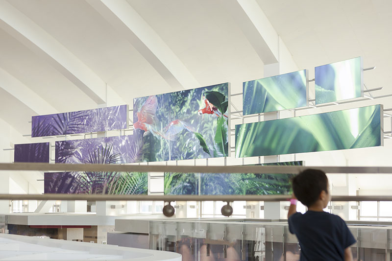 Los angeles airport LAX electrosonic inspired spaces blooloop