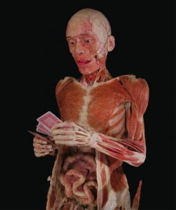 Body Worlds poker player shocking museum exhibitions