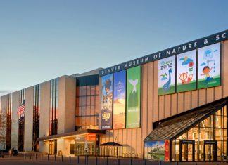 Birdly Denver Museum of Nature & Science