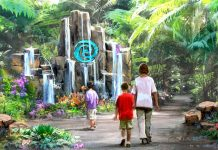 Disney teases Avengers Campus, Star Wars holiday experience and Moana attraction