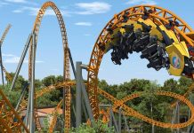 dreamworld roller coaster