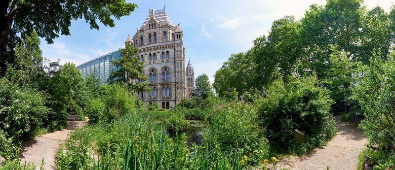 natural history museum gardens