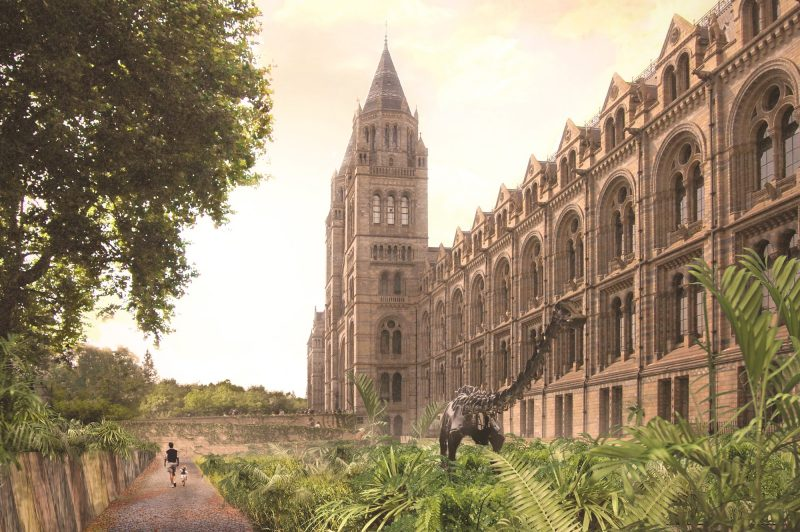 natural history museum urban nature project