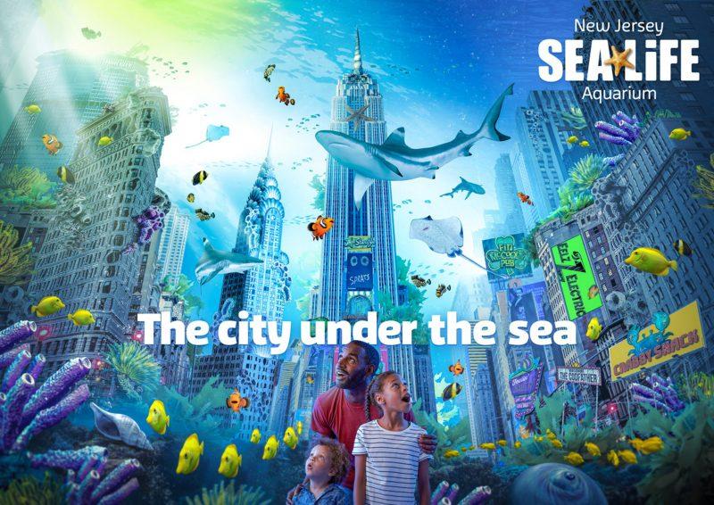 new jersey sea life aquarium projects american dream