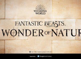 fantastic beasts at the natural history museum