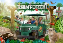 chessington rainforest land