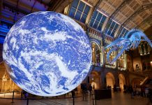 natural history museum earth