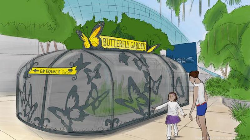 artist impression of florida aquarium projects - butterfly garden
